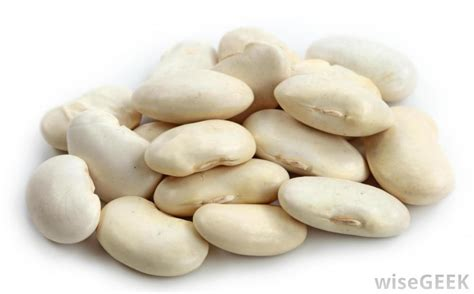 The Bean Lima Comes In Like A by What Are Lima Beans With Pictures
