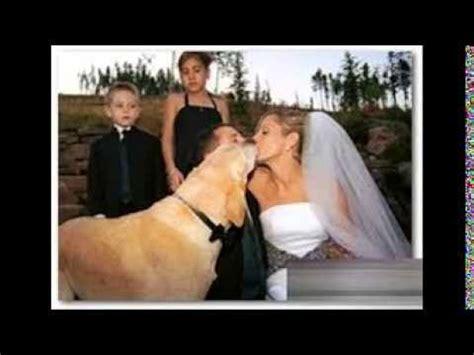 mujer se pega con su mascota perro se casa con mujer y tienen 1 bebe youtube