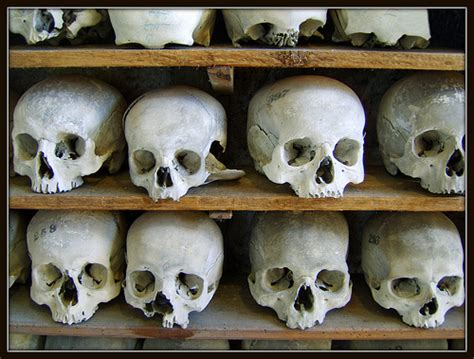 Skull Shelf by Skull Shelves Flickr Photo