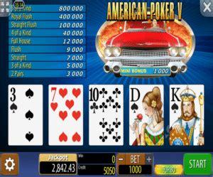 american poker  freeslot  click  play
