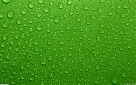 wallpaper for walls green green wall wet wallpaper 7555 open walls