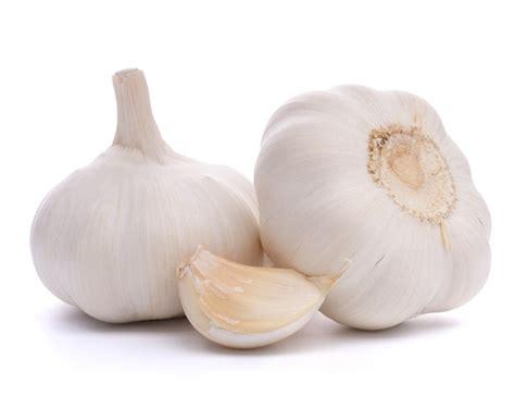 medicinal uses of garlic and its health benefits