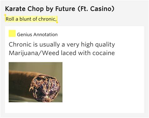 chop definition meaning what is chop in the british roll a blunt of chronic karate chop lyrics meaning