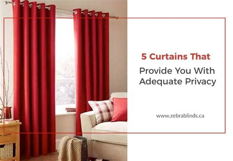 privacy curtains   light  ultimate ideas
