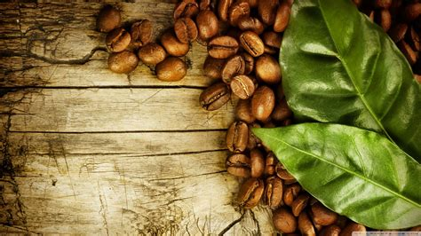 coffee seeds wallpaper hd wallpaper background cafe wallpapers wallpaper cave
