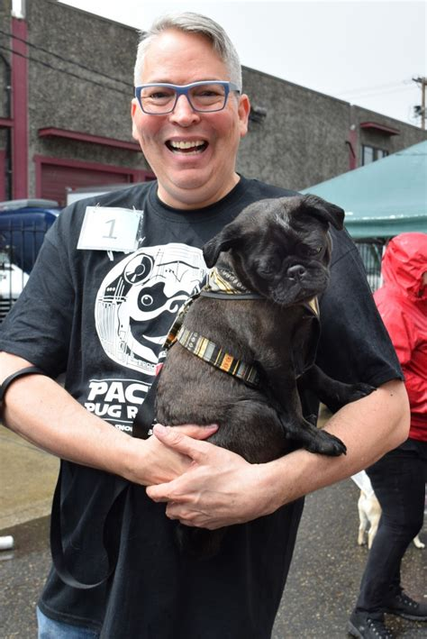 portland pug rescue wars pug crawl breaks records oregon humane society