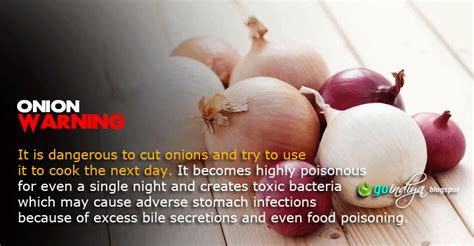 benefits of onion for hair 50 outstanding benefits of onions for skin hair and