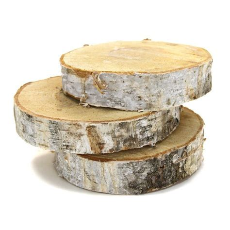 6 Birch Tree Wood Slab Centerpiece [6 Wood Birch Tree