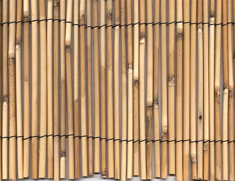 How To Make A Bamboo L by Fence Outstanding Reed Fencing Ideas Bamboo Fencing