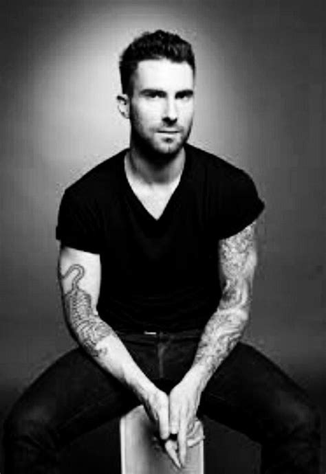 adam levine golden retriever 66 best images about adam levine b w on hey and him