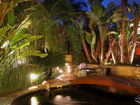 Images Of Backyards Eric Newman S Backyard Koi Pond Pages