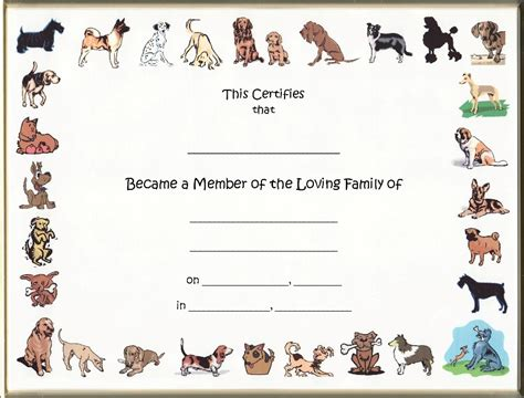 puppy adoption certificate keepsake adoption 8 5 x 11 inch certificate border blank with black