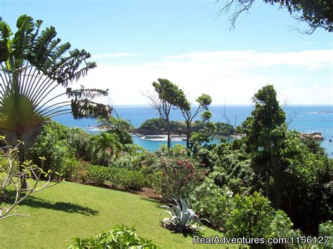 sea cliff cottages dominica relax in nature at sea cliff cottages calibishie