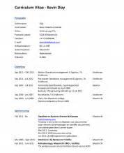 Curriculum Vitae Voorbeeld voorbeeld nederlands cv knoowy