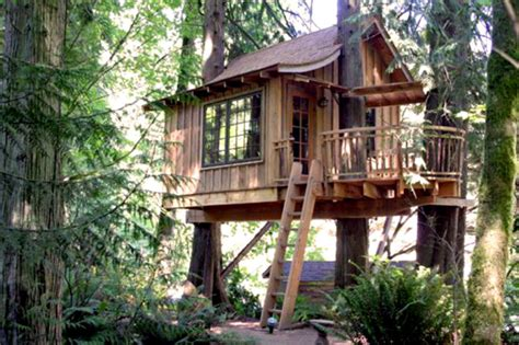 tree house treehouse point eco resort helps you reconnect with nature