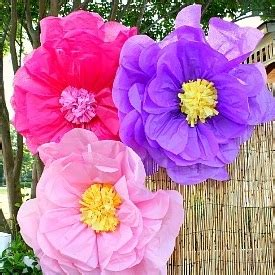 How To Make Big Flowers Out Of Tissue Paper - 10 ways to make tissue paper flowers guide patterns