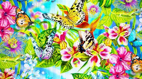 descargar fondos de pantalla flores de muchos colores hd descargar fondos de pantalla flores de muchos colores hd