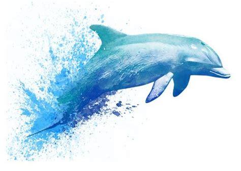watercolor tattoos dolphin dolphin watercolor temporary tatt me temporary