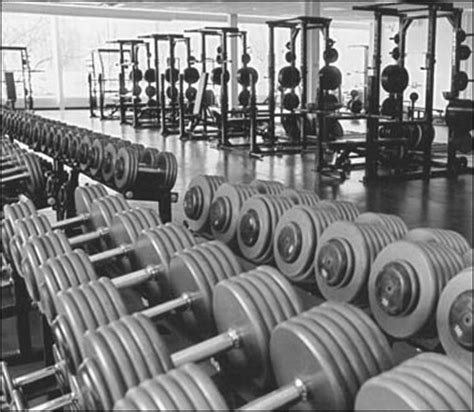 the weight room chaos in the weight room barbell shrugged