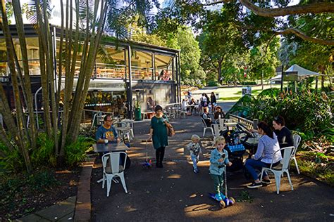 Botanic Garden Cafe Sydney Royal Botanic Garden Sydney Au