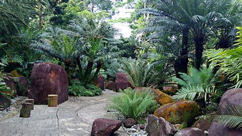 plants in singapore botanic gardens singapore s evolution garden flowering plants