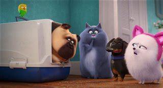 secret life  pets  trailer