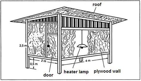 duck housing plans domestic duck house plans quack pinterest