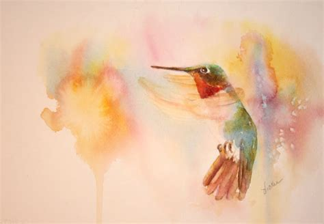 vickie s sketchbook hummingbird studies movement and light