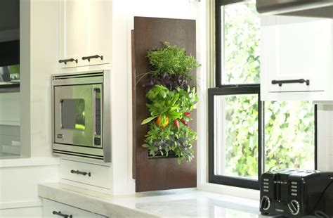 vertical herb garden indoor edible walls