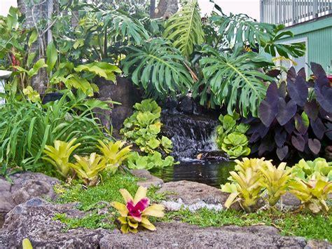 tropical garden landscaping ideas