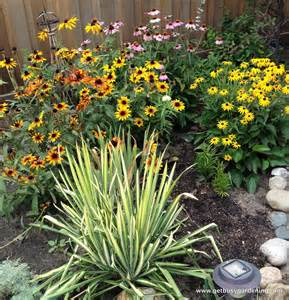 late blooming perennials late summer to do list