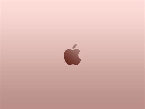 wallpaper apple rose gold rose gold wallpaper 183 download free amazing full hd