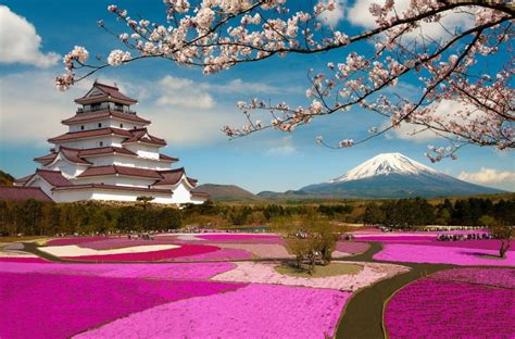 Modern Country Fashion by Trip To Japan Cherry Blossoms Mount Fuji And Thermal