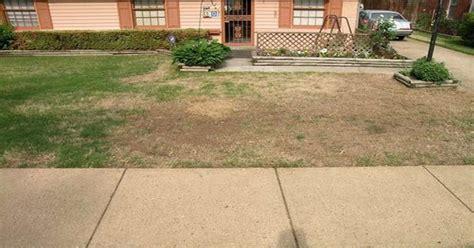 rasen düngen wann ist das gras des nachbarn immer gr 195 188 ner nach diesen tipps