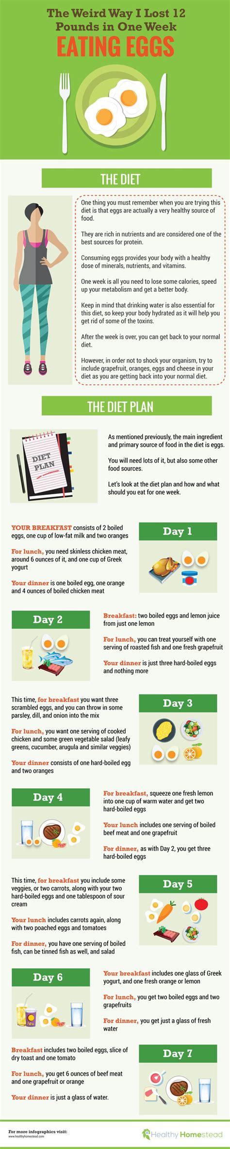 Egg Detox Week by Best 20 Egg Diet Ideas On Egg Diet Plan