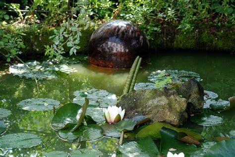 Superbe Bassin Pour Petit Jardin #4: bassin-nymphea.jpg