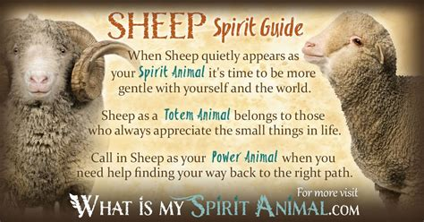 ram meaning sheep ram spirit totem and power animal symbolism and