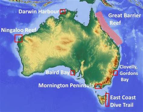 scuba diving in australia dailydive.com