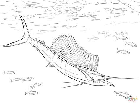 marlin fish coloring pages marlin fish coloring coloring pages