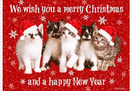merry christmas cats cats animals background wallpapers  desktop nexus image