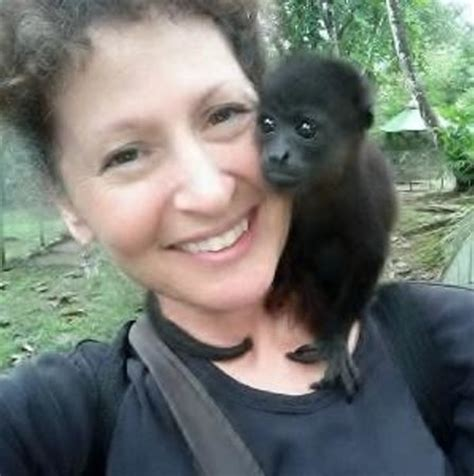 costa rica sanctuary costa rica wildlife sanctuary limon all you need to before you go