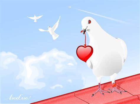 lovely white ljubavne slike golub i srce slika za zaljubljene