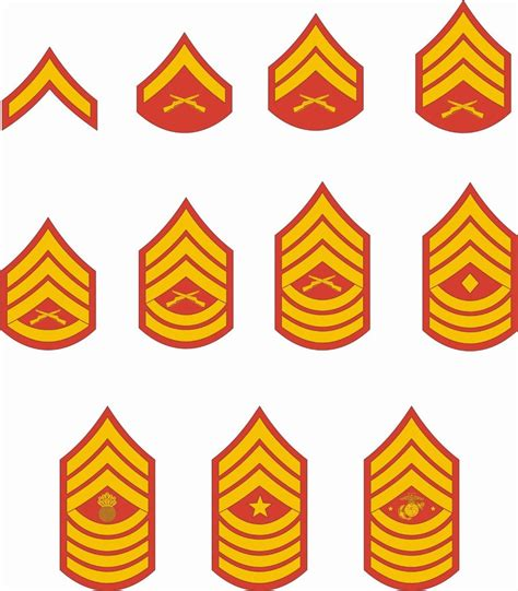 marine corps ranks marine corps rank insignia bing images