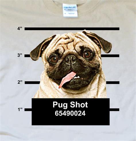 pug chart pug t shirt