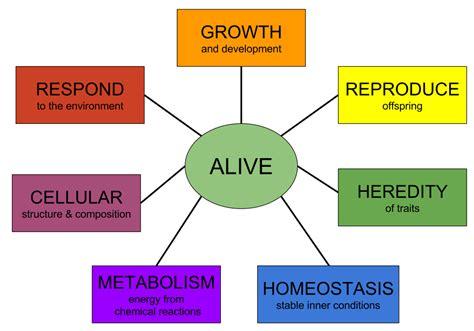 characteristics of biography file characteristics of life svg wikipedia
