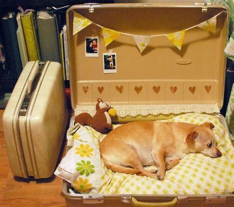 suitcase dog bed old suitcase turned dog bed