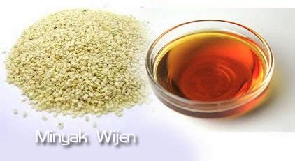 Minyak Wijen Di Indo supplier herbal of dried powder extract minyak wijen