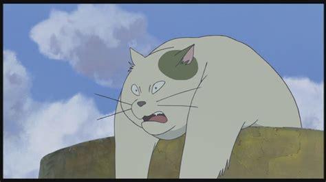 ghibli film the cat returns the cat returns studio ghibli image 25671579 fanpop
