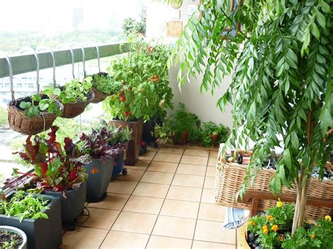 balcony vegetable gardens balcony vegetable garden design pink and orange brick