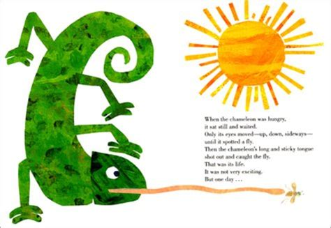 you are one in a chameleon books the mixed up chameleon board book kiddies